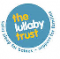 Foundation for the Study of Infant Deaths   logo
